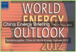 china-energy-briefing-13-deckblatt