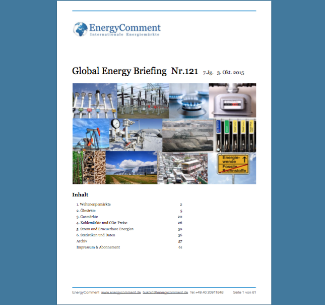 Global Energy Briefing Nr.121