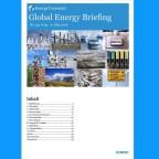 Global Energy Briefing Nr.133